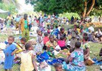 Kalehe :  L'IRC organise une foire en faveur des déplacés de guerre à Hombo