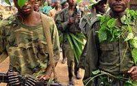 FIZI : La presqu'île d'Ubwari assiégée par le rebelle Yakotumba