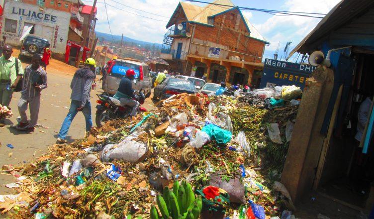 Sud-Kivu : La Société civile environnementale en conférence de restitution sur l'AAIN et la conservation de la biodiversité ce vendredi à Bukavu