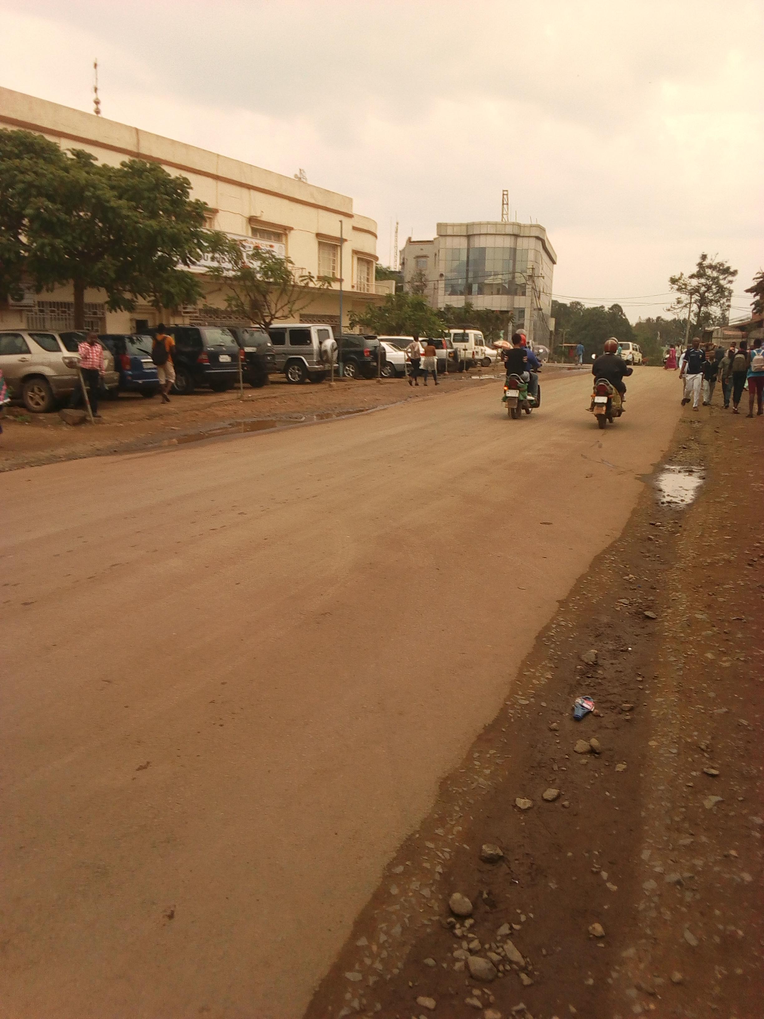 Bukavu: Il n'est pas exclu que certains combattants de l'UDPS prennent part à cette marche de l'Opposition (militant udps)