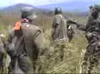 Opération Sokola 2 : Shetani se soumet aux Fardc