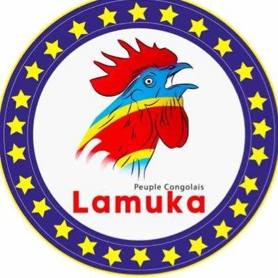 RDC : Enfin la coalition Lamuka se prononce sur la suspension de l'installation du sénat et le report de l'élection des gouverneurs