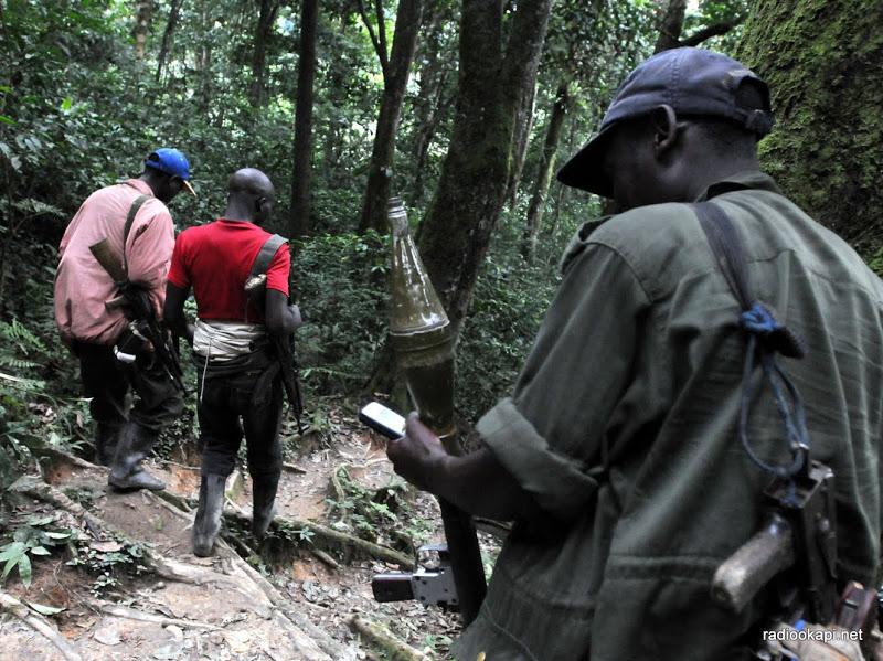 Le TLP-RDC met Félix Tshisekedi devant sa promesse d'éradiquer des groupes armés sur le sol congolais
