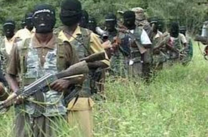 Nord-Kivu/état de siège: Plus de 45 rebelles ADF neutralisés et 91 de leurs collaborateurs capturés par les FARDC à Beni