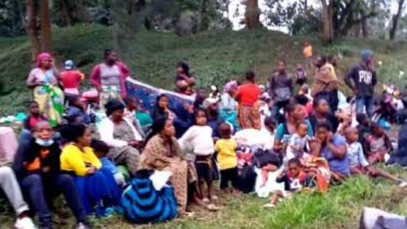 Maniema: L'Organisation ARPJ dresse un bilan de 93 enfants séparés de leurs familles suite aux affrontements entre les milices Pygmées et les FARDC à Kabambare